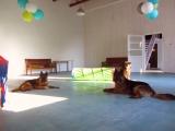 relaks po szaleństwie na sali zabaw